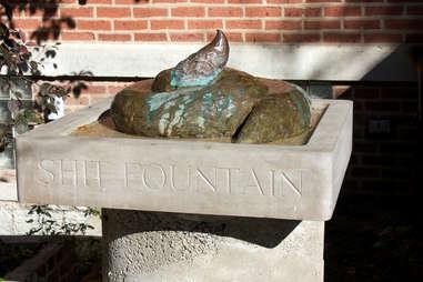 poo fountain