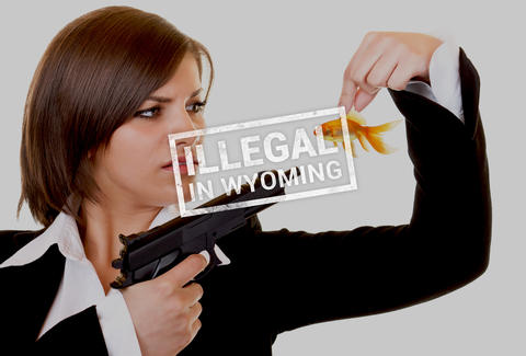 Lady pointing gun at fish