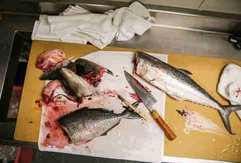 fish butchery