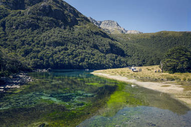 Blue Lake, New Zealand clear waters