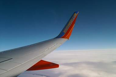 Plane Winr
