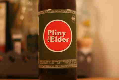 pliny the elder