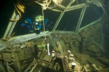 underwater zoo