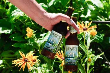 Wasatch Summerbrau bottles