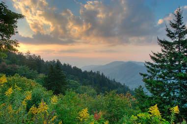 Great Smoky Mountain Nat'l Park