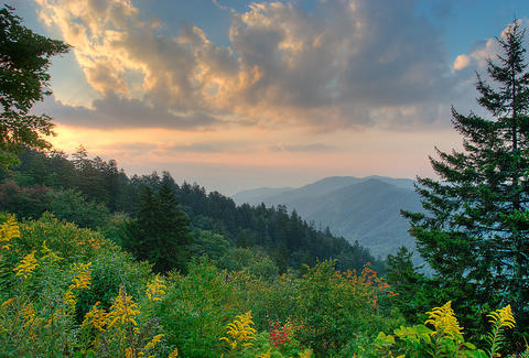 Great Smoky Mountain Nat'l Park