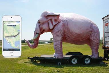 Giant pink elephant