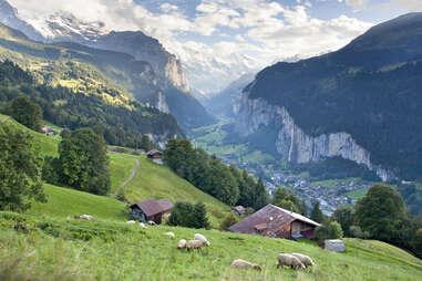 Lauterbrunnen, Switzerland, Alps, meadow, valley