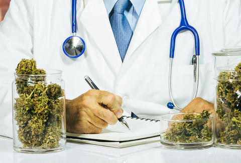 Weed Doctor