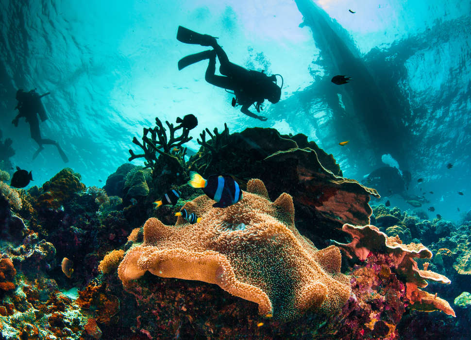 Florida Reefs And Wrecks Map.12 Best Places To Scuba Dive In Florida Key Largo Miami Fort