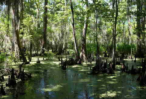 Town And Country New Orleans >> Most Beautiful Places in Louisiana - Thrillist