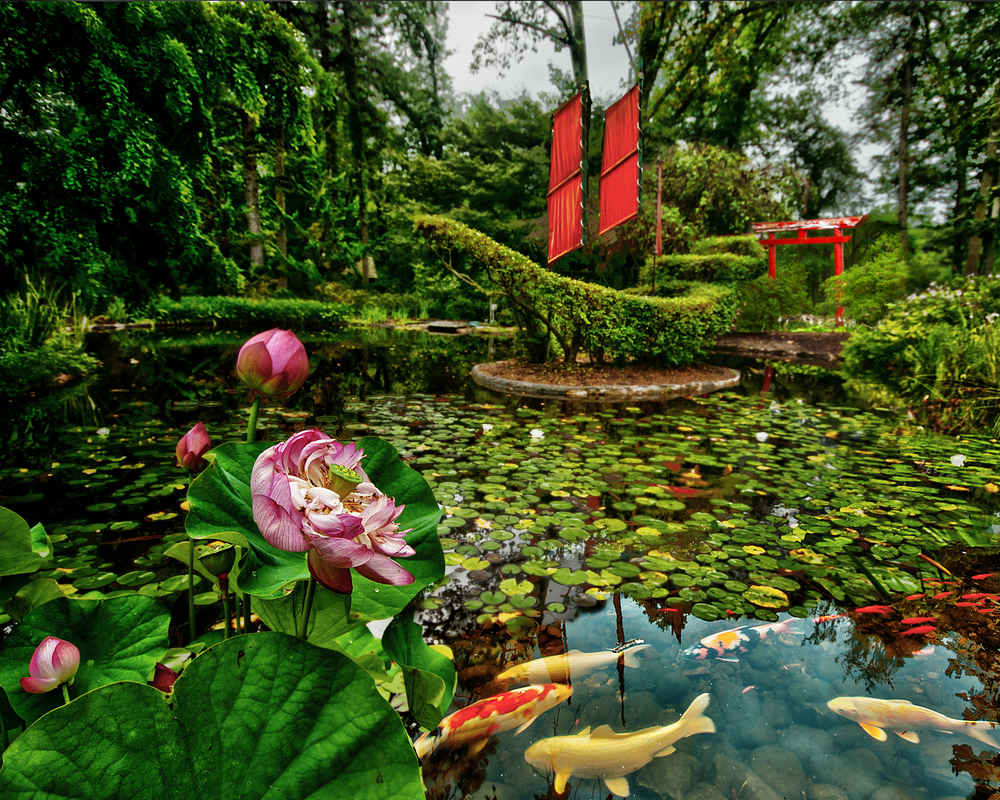 16 Most Beautiful Places In Maryland Thrillist