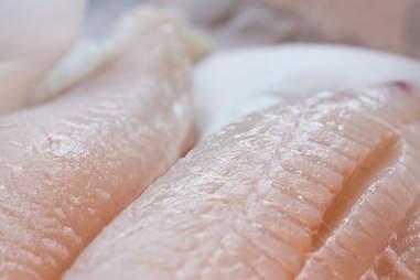 Halibut fillets -- Thrillist Recipes