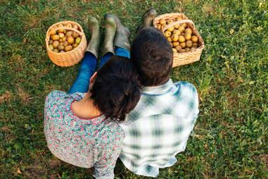 Couple apple picking