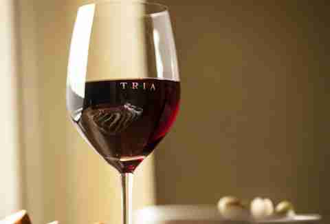 Glass of red wine at Tria taproom