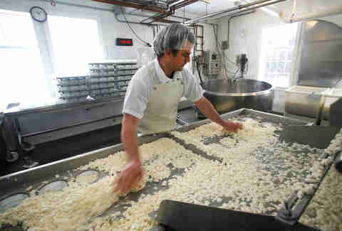 Cheese being processed