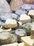 Cheese variety