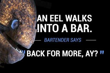 Eel walks into a bar