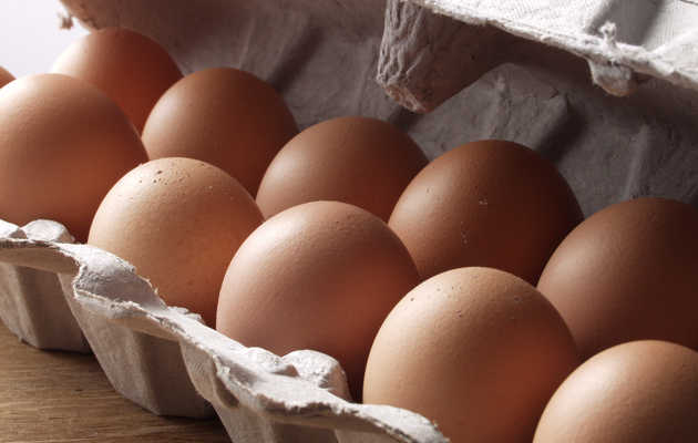 What the Hell Do All Those Phrases on Your Carton of Eggs Mean?
