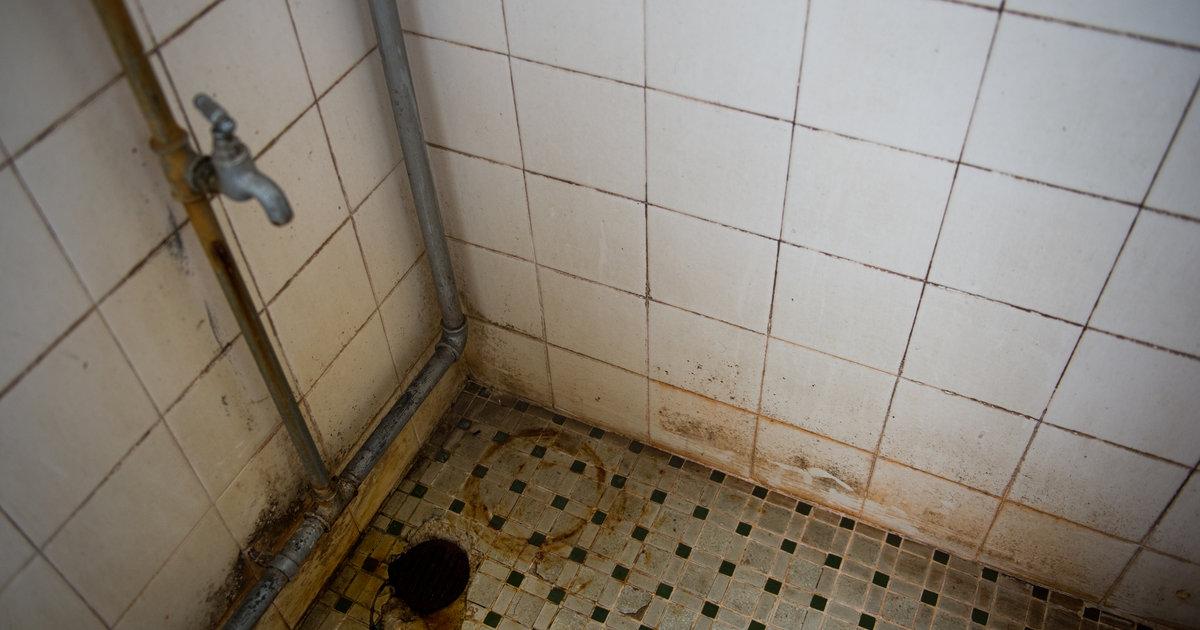 how to get rid of limescale in shower door