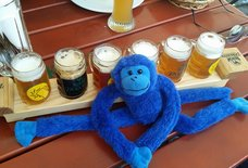 Blue Monkey Tavern