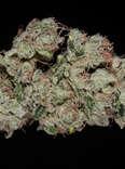 closeup of sour diesel cannabis strain bud