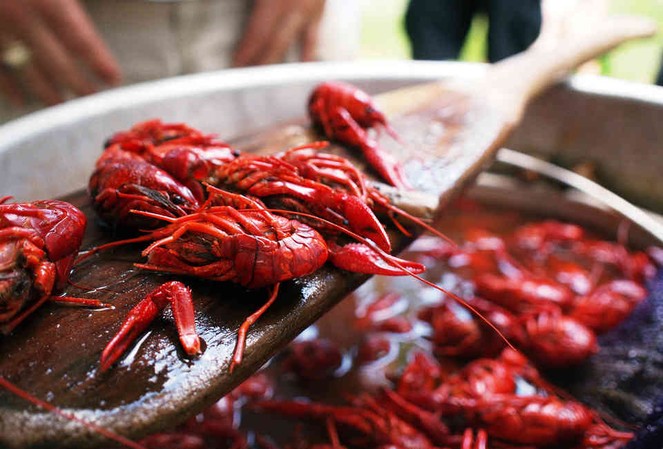What to Do at a Crawfish Boil - Thrillist