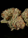 Pineapple Express weed strain, cannabis, trichomes