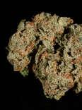 Super Silver Haze weed strain, cannabis, trichomes