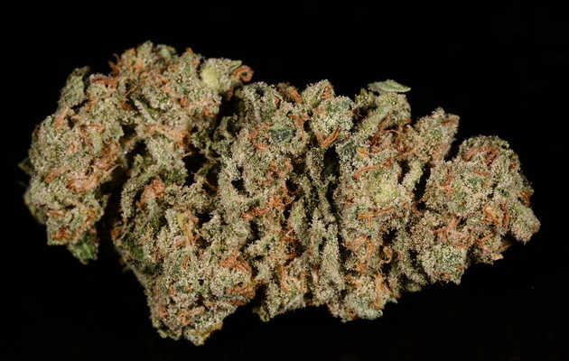 Everything You Need to Know About the Super Silver Haze Weed Strain