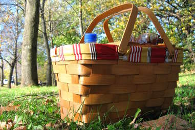 picnic, basket, park, date