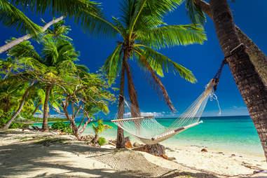 Hammock and palm trees on the tropical island of Fiji
