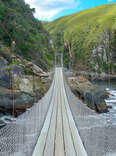 Bridge along the Garden Route in Tsitsikamma National Park, South Africa