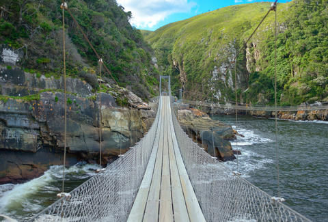 Bridge along the Garden Route in Tsitsikamma National Park, South Africa