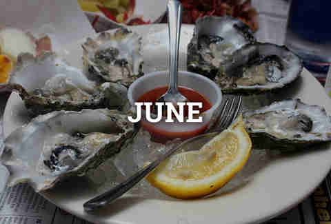 raw oysters with lemon, seafood, bivalves