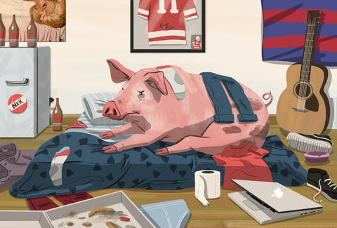 illustration of a pig lounging in a messy bedroom