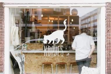 Exterior shot of window decoration at Kattencafé