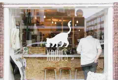 Exterior shot of window decoration at Kattencafé