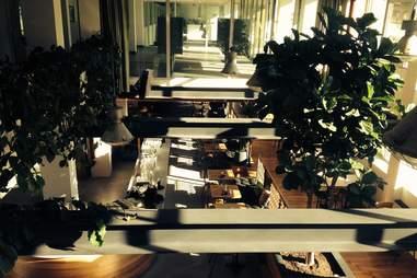 Soft shot of interior of Wilde Westen