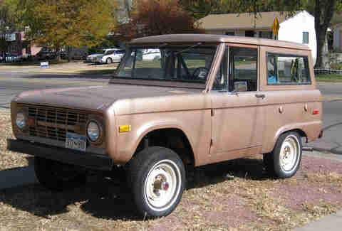 Brown Bronco in a yard