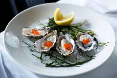 oysters on the half shell, seaweed