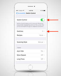 screenshot of switch control settings on iPhone 6s