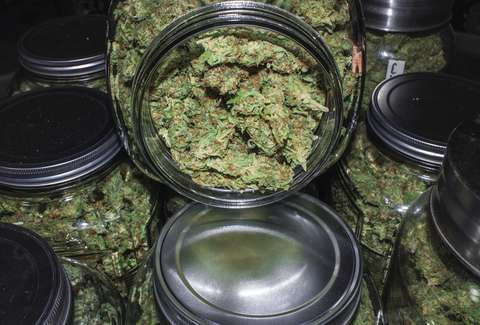 Marijuana Storage - Best Ways to Store Weed - Thrillist