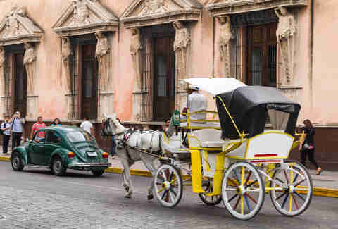 horse and carriage in merida