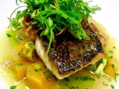 Pumpkin Restaurant fish philly