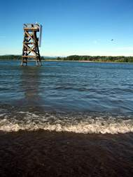 sauvie island oregon