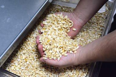 grains, Espita Mezcaleria