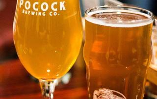 Pocock Brewing Company