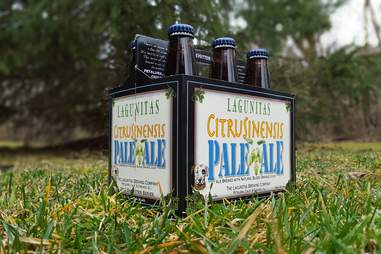 lagunitas pale ale