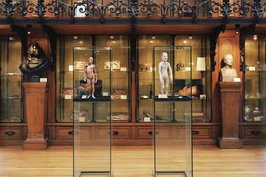 Musée d'histoire de la médecine Museum of Medical History